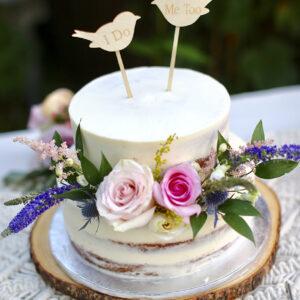 Xiomin-Cake-1.2-website